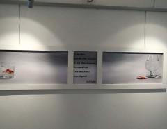Momenti della Mostra Collettiva 2015
